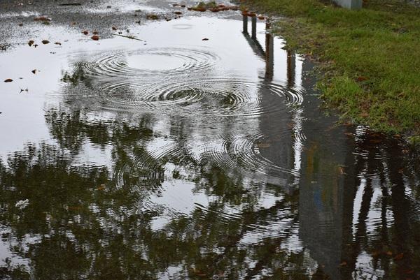 飯森山公園雨上がり