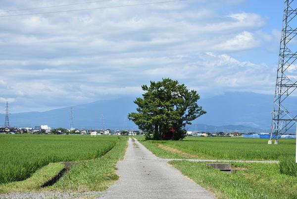 日本海病院からの風景