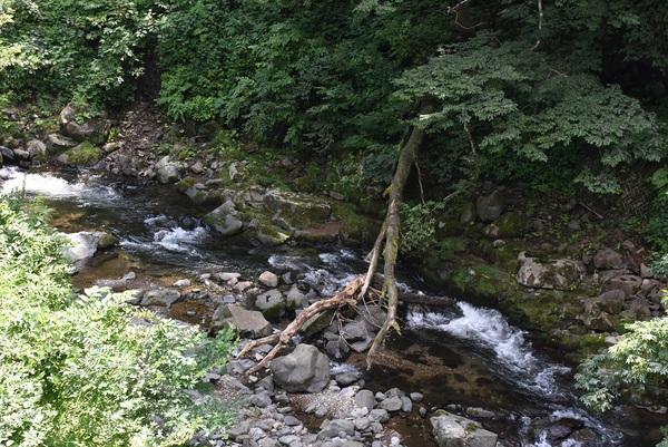 山の日は青沢地区大俣川へ