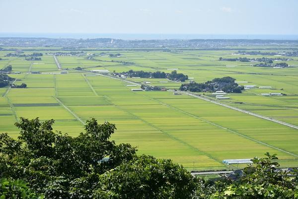 東平田大森山標高180.3m