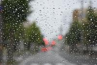 台風18号の雨と風