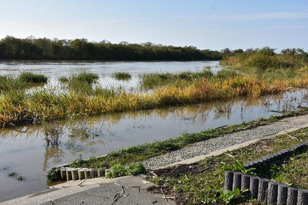 増水のスワンパーク