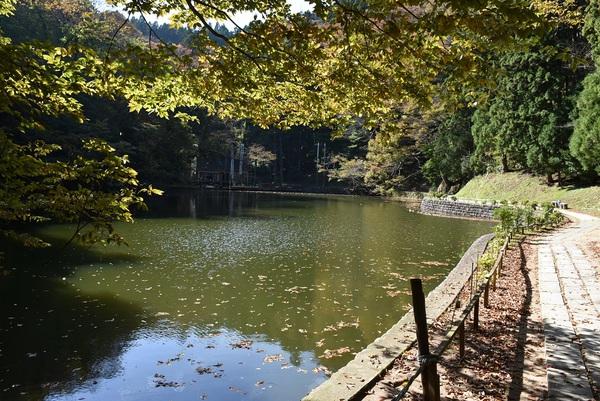 善宝寺、貝喰の池の秋