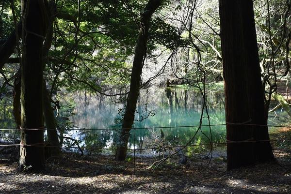 囲まれた丸池さま
