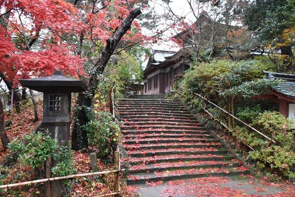 旧光丘文庫脇階段の赤い絨毯