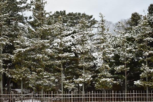 雪の清亀園(せいきえん)