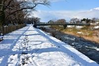 冬晴れの荒瀬川遊歩道