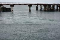 酒田北港温排水付近の景観