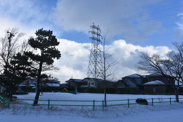 きのこ公園の冬