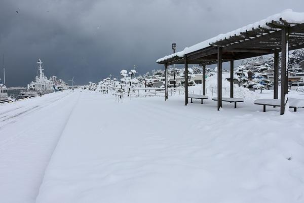 酒田本港雪の中