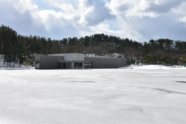 凍てつく白鳥池