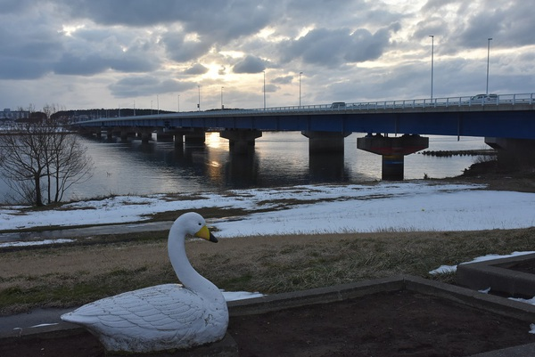 冬夕暮れの出羽大橋