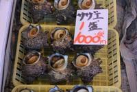 海鮮市場の元気な貝たち