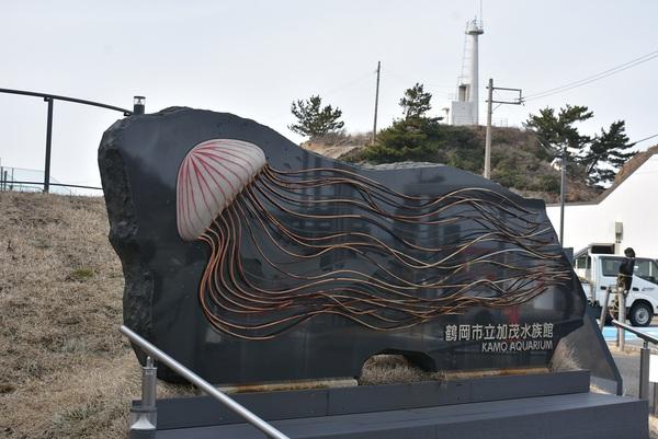 加茂水族館のやさしさ