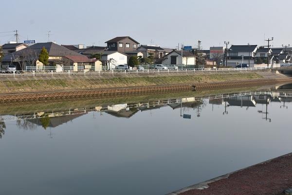 鏡のような新井田川水面