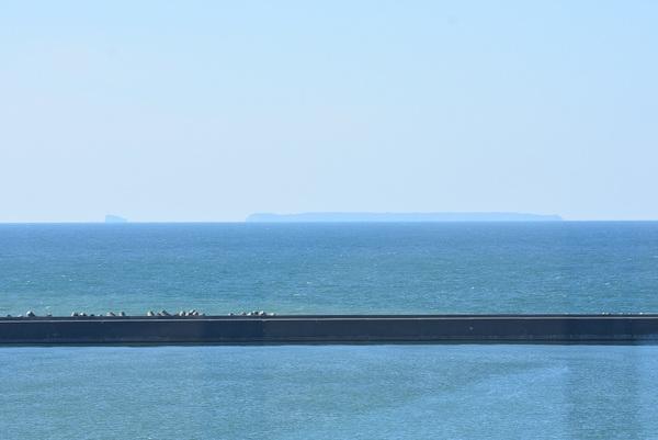 北港緑地展望台からの眺め