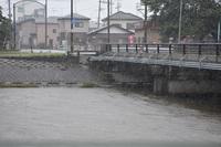 新井田川に雨が降る