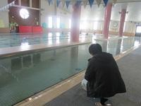 きれいなプールで愉しく泳ぎましょう♪