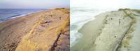 昨日の大波で