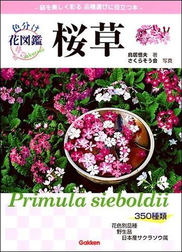 日本桜草の本