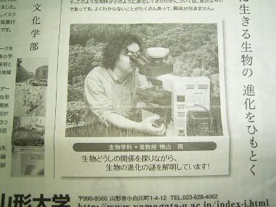 庄内の日本桜草栽培日誌:横山潤...