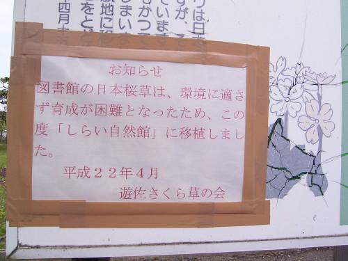 遊佐山野草展示会