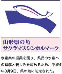 田沢川ダムまつりは禁漁区でイベント