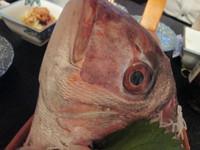 釣った魚を肴に