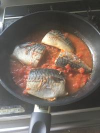 鯖のトマト煮込み
