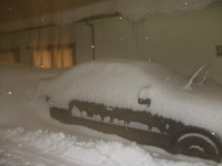 半端でない雪ふったぁ!
