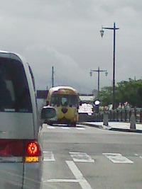 ねこバス!