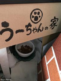 R『う〜ちゃん』食欲止まらず!見事な食べっぷりにびっくり!の巻