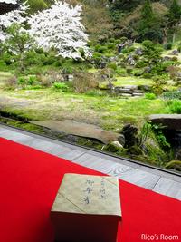 R 最良の一日♡『總光寺/国指定名勝庭園』にて、『日本料理 村上/懐石弁当』でお花見〜♪