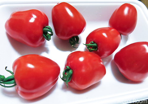 R 新品種『トマトベリー』&『とろろ昆布とおぼろ昆布』の違い