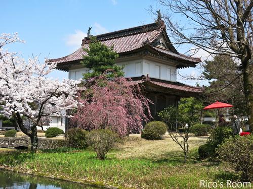 R 松山城大手門と總光寺の桜/總光寺オリジナル和菓子『きのこ杉』誕生♪