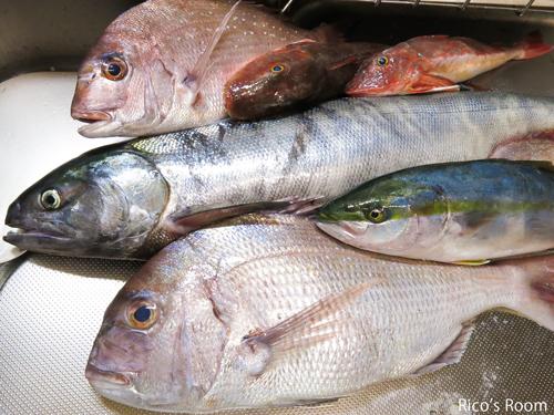 R 本日大漁♪Ricoママの創作料理『鮭の照り焼き』『鮭ボール』の完成♪