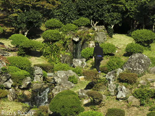 R 『らーめん屋です』→『眺海の森』→『總光寺』→『草木舎』