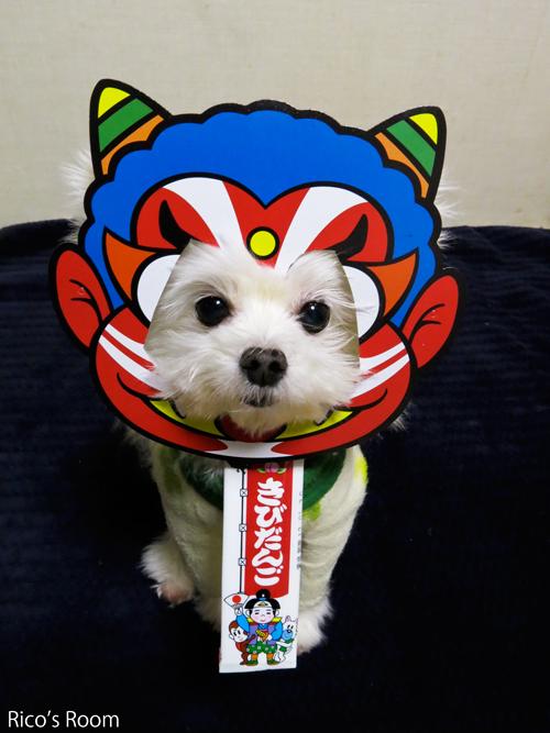 R 爆笑『恵方巻き』&恒例『鬼っ子わんこ隊2015』