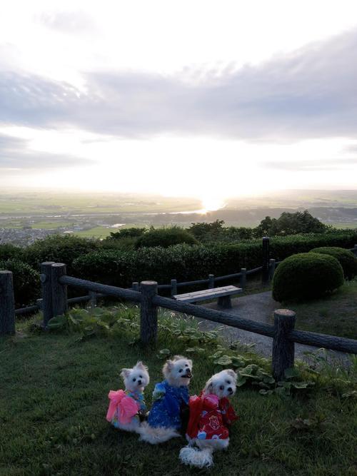 R ぽぉ〜ちゃんと思い出の場所/松山『眺海の森』をお散歩