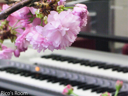 庄内余目病院 院内コンサート『再生桜&ルリアール』開催決定♪
