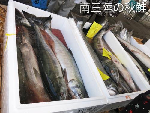 Rたちかわ秋まつり&庄内鍋総選挙2013にルリアール出演報告