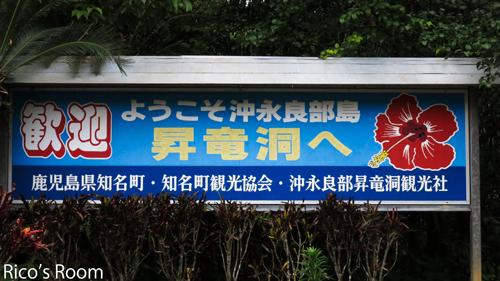 R2013.3旅行記6『沖永良部昇竜洞、さとうきび工場見学』