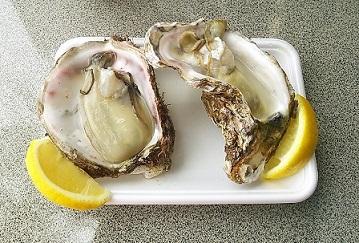 牡蠣2種食べ比べ♡