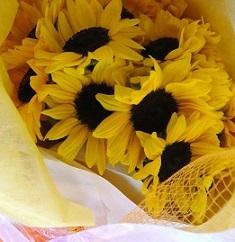 ひまわりの花のような方・・・♡