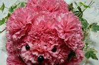 残したいお花