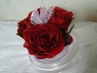 プロポーズで頂いたバラ