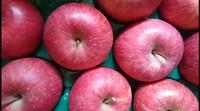 おいしいりんごです。 2017/12/13 16:36:45