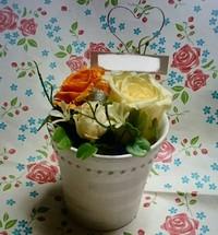 プレゼントのお花たち