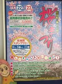 楯山公園桜まつりが開催されます!