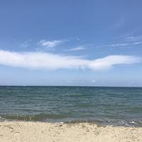 つかの間の夏休み